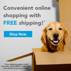Online Shopping for Pet Products